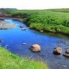 Milieux naturels et aménagements riverains