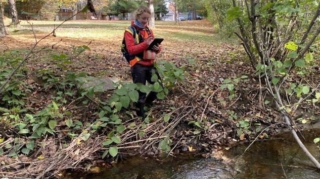 Une ingénieure consulte sa tablette lors de la visite terrain d'un milieu hydrique, un ruisseau.