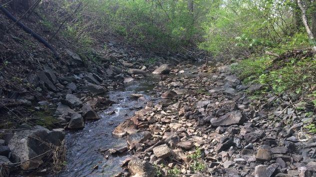 Ruisseau dont le lit est couvert de roche