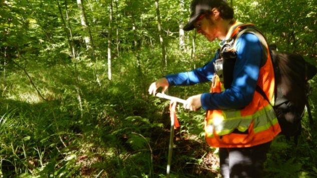 Un homme en forêt utilise un outil pour échantillonner le sol
